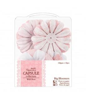 Pack 32 flores de papel Wild Rose