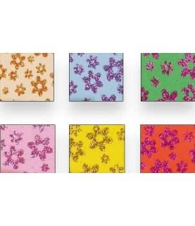 Pack 6 laminas Goma eva estampada de purpurina A4