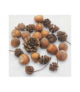 Comprar Servilleta frutos secos y piñas de Conideade