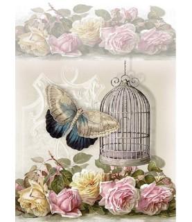 Papel de Arroz en A4 jaula y mariposa