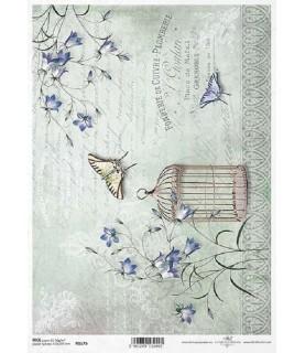 Comprar Papel de Arroz en A4 Jaula con flores de campanilla de Conideade