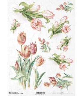Comprar Papel de Arroz en A4 ramos de tulipanes de Conideade