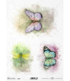 Comprar Papel de Arroz en A4 mariposas y libelula de Conideade