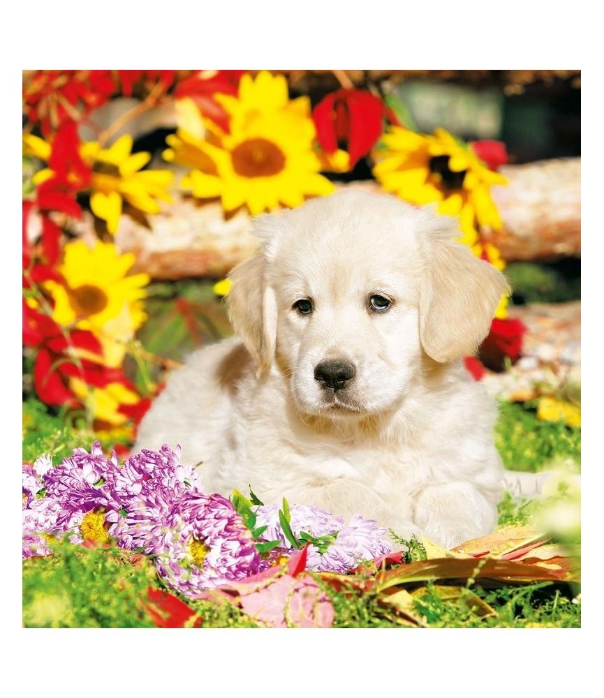 Servilleta decorativa perrito con flores
