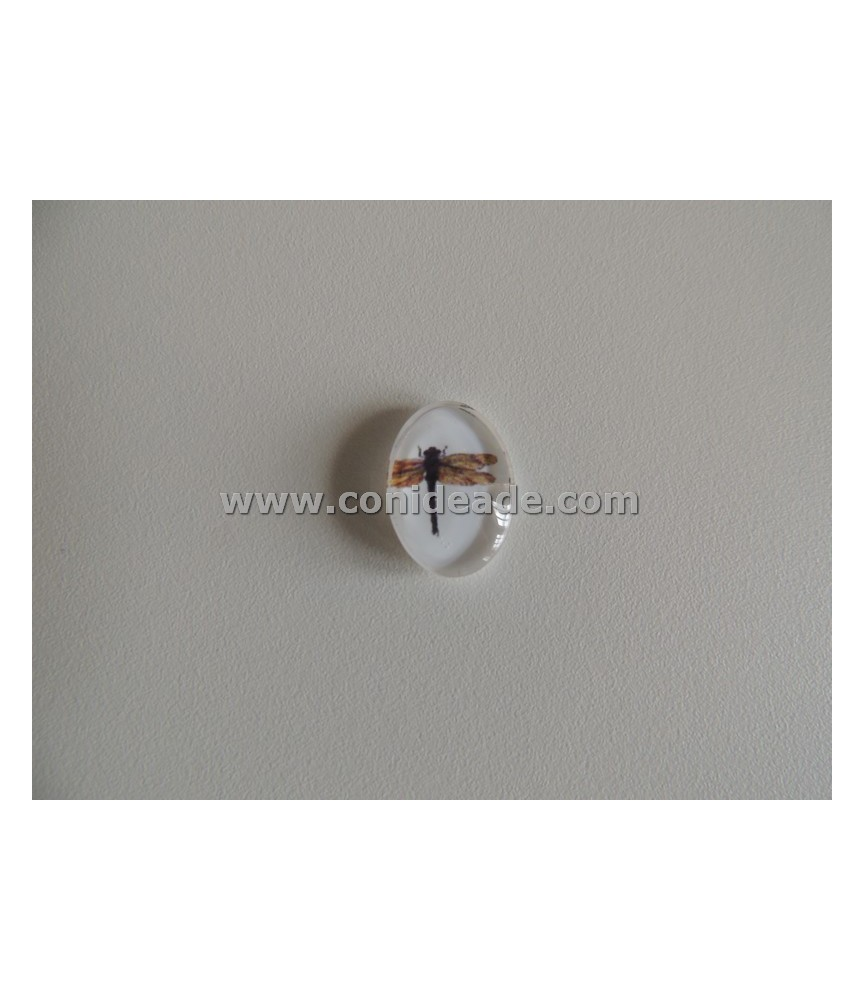 Cabuchon cristal libelula 13x18mm