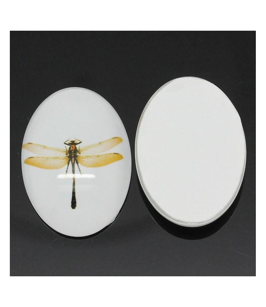 Cabuchón cristal libelula 25x18 mm