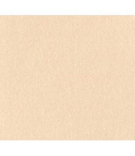 Comprar Papel scrap Bazzill basico crema de Conideade