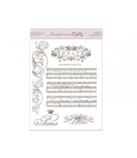 Comprar Imagen para transferir mod Sonate A5 de Conideade