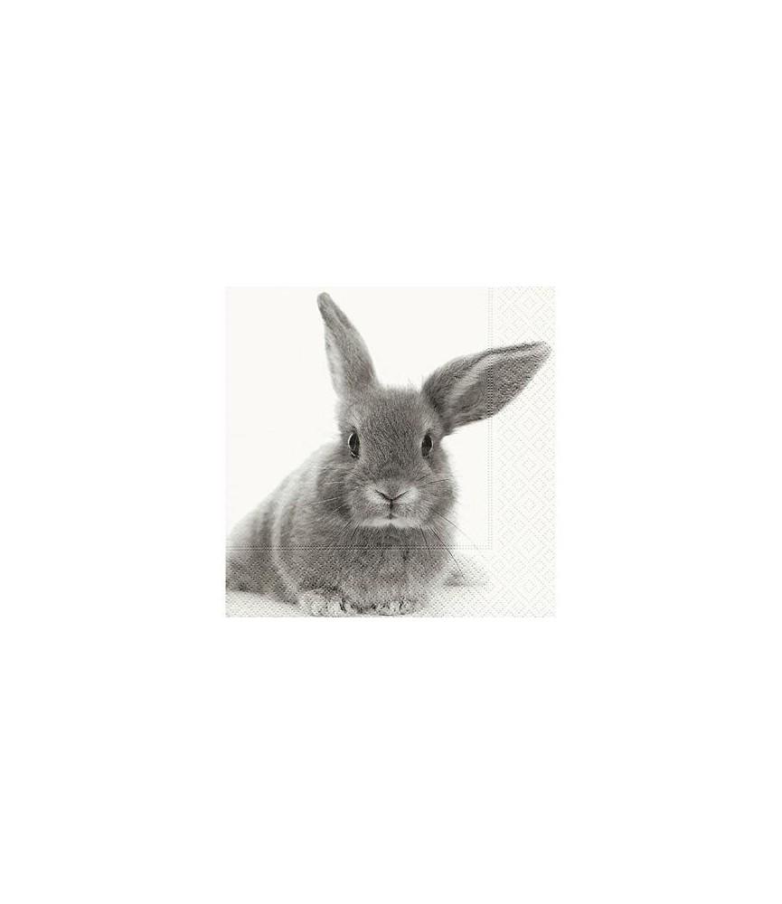 Servilleta conejito gris