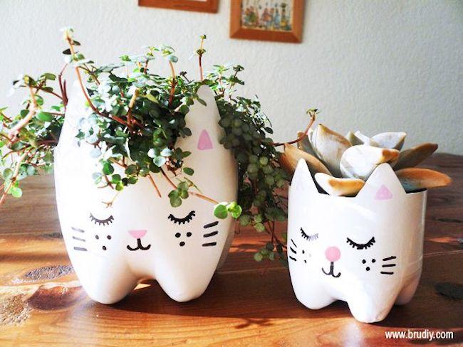 DIY maceta gatos