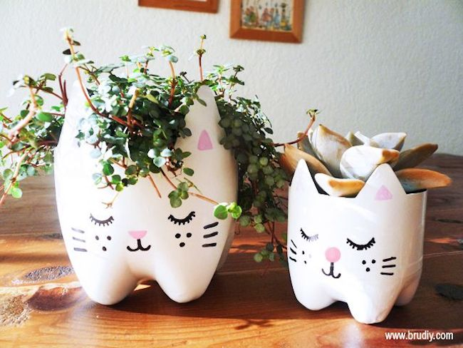 DIY maceta gatos