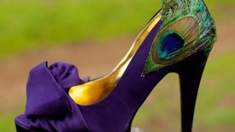 zapato decorado con pluma